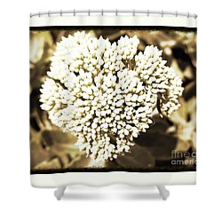 Shower Curtain featuring the painting Sedum In The Heart by Kimberlee Baxter