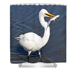 See My Catch Shower Curtain by Cynthia Guinn