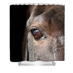 See My Soul Shower Curtain by Davandra Cribbie
