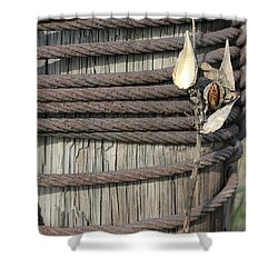 Seed Pod Iron And Wood Shower Curtain