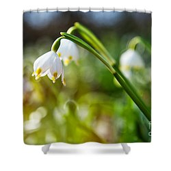 Shower Curtain featuring the photograph Seeing The Sun by Christine Sponchia