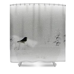 Seeking Shelter Shower Curtain by Barbara S Nickerson