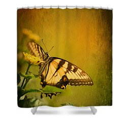 Seeking Sweetness 2 Shower Curtain by Lois Bryan