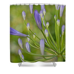 Seemingly Delicate Shower Curtain by Heidi Smith