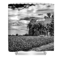 Seen Better Days Shower Curtain by Jeff Burton