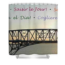 Seize The Day - Annapolis Bay Bridge Shower Curtain by Emmy Marie Vickers
