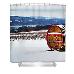 Seneca Lake Winery In Winter Shower Curtain