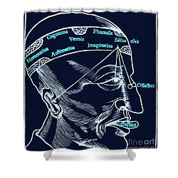 Senses And Sensation 16th Century Shower Curtain by Science Source