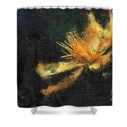 Sensitivity Shower Curtain by Aimelle