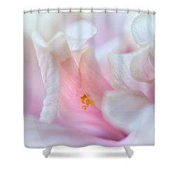 Sensuality. Peach Hibiscus. Macro Shower Curtain by Jenny Rainbow