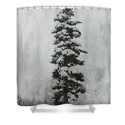 Sentinel Shower Curtain by Marilyn Wilson