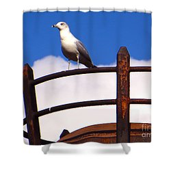 Sentinel Sea Gull Shower Curtain