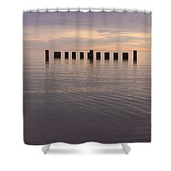 Sentinels Shower Curtain by Adam Romanowicz