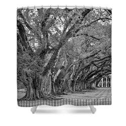 Sentinels Monochrome Shower Curtain by Steve Harrington