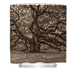 Sepia Angel Oak Shower Curtain