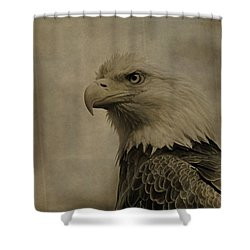Sepia Bald Eagle Portrait Shower Curtain by Dan Sproul