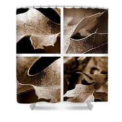 Shower Curtain featuring the photograph Sepia Leaf Collage by Lauren Radke