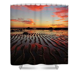 Shower Curtain featuring the photograph September Brilliance by Dianne Cowen