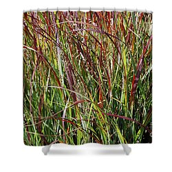 September Grasses By Jrr Shower Curtain by First Star Art