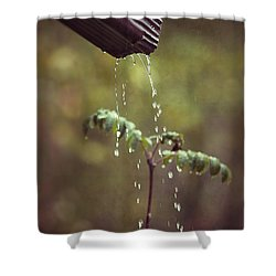 September In The Rain Shower Curtain by Ari Salmela