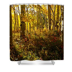 September Scene Shower Curtain by Jeremy Rhoades
