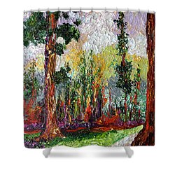 Sequoia Path National Parks  Shower Curtain by Ginette Callaway