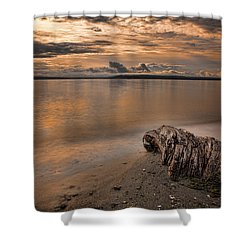 Serene Beach Shower Curtain