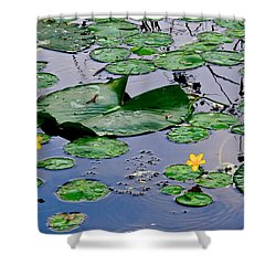 Serene To The Extreme Shower Curtain by Frozen in Time Fine Art Photography