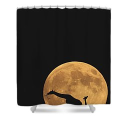 Serengeti Safari Shower Curtain by Carrie Ann Grippo-Pike