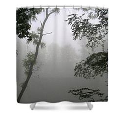 Serenity Shower Curtain by Craig T Burgwardt