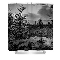 Serenity Shower Curtain by David Rucker