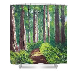 Shower Curtain featuring the painting Serenity Forest by Bev Conover