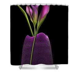 Serenity In Purple Shower Curtain