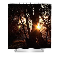 Shower Curtain featuring the photograph Serenity by Jennifer Muller