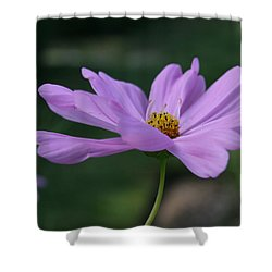 Shower Curtain featuring the photograph Serenity by Neal Eslinger
