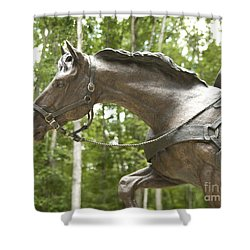 Sgt Reckless Shower Curtain