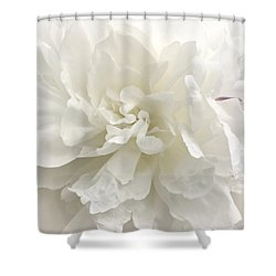 Shabby Chic Wedding Shower Curtain