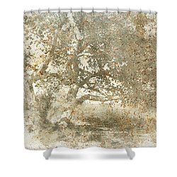 Shade Tree Shower Curtain by Brett Pfister