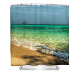 Shaded Beach Shower Curtain by Adrian Evans