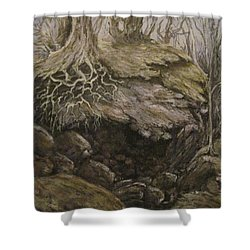 Shower Curtain featuring the painting Shades Of Froud by Megan Walsh