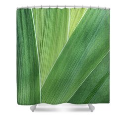 Shower Curtain featuring the photograph Shades Of Green #2 by Judy Whitton