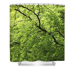 Shades Of Green Shower Curtain by Amy Gallagher