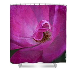 Shades Of Pink Shower Curtain by Linda Blair