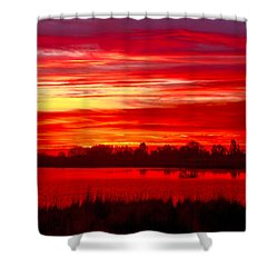 Shades Of Red Shower Curtain by Robert Bales