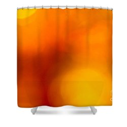 Shades Of Spheres Shower Curtain