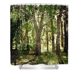 Shadow Forest Shower Curtain by Judy Hall-Folde