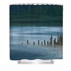 Shadow Host In The Mist Shower Curtain