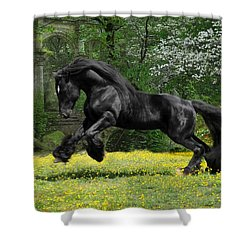 Shadow Liberty Shower Curtain by Fran J Scott