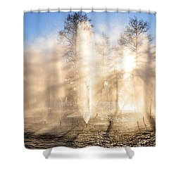 Shadow Play Shower Curtain by Charlotte Schafer