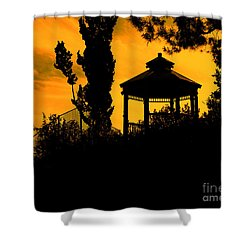 Shadowlands 6 Shower Curtain by Bedros Awak